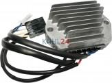 Regler/Gleichrichter Hatz 1B20 1B30 1B40 1B50 1D41 1D50 1D60 1D70 1D81 1D90 2G30 2G40 usw. Ducati energia 343650 34365004 348650 Saprisa 4491 12 Volt 30 Ampere